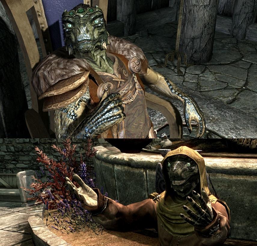 Lizards Of Skyrim SE グラフィックス