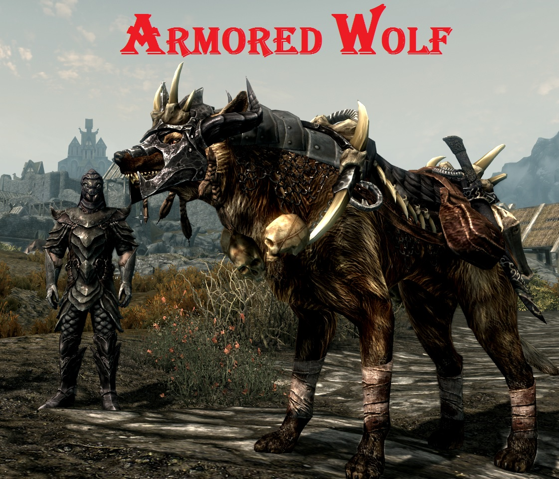 how to get 2 followers in skyrim special edition