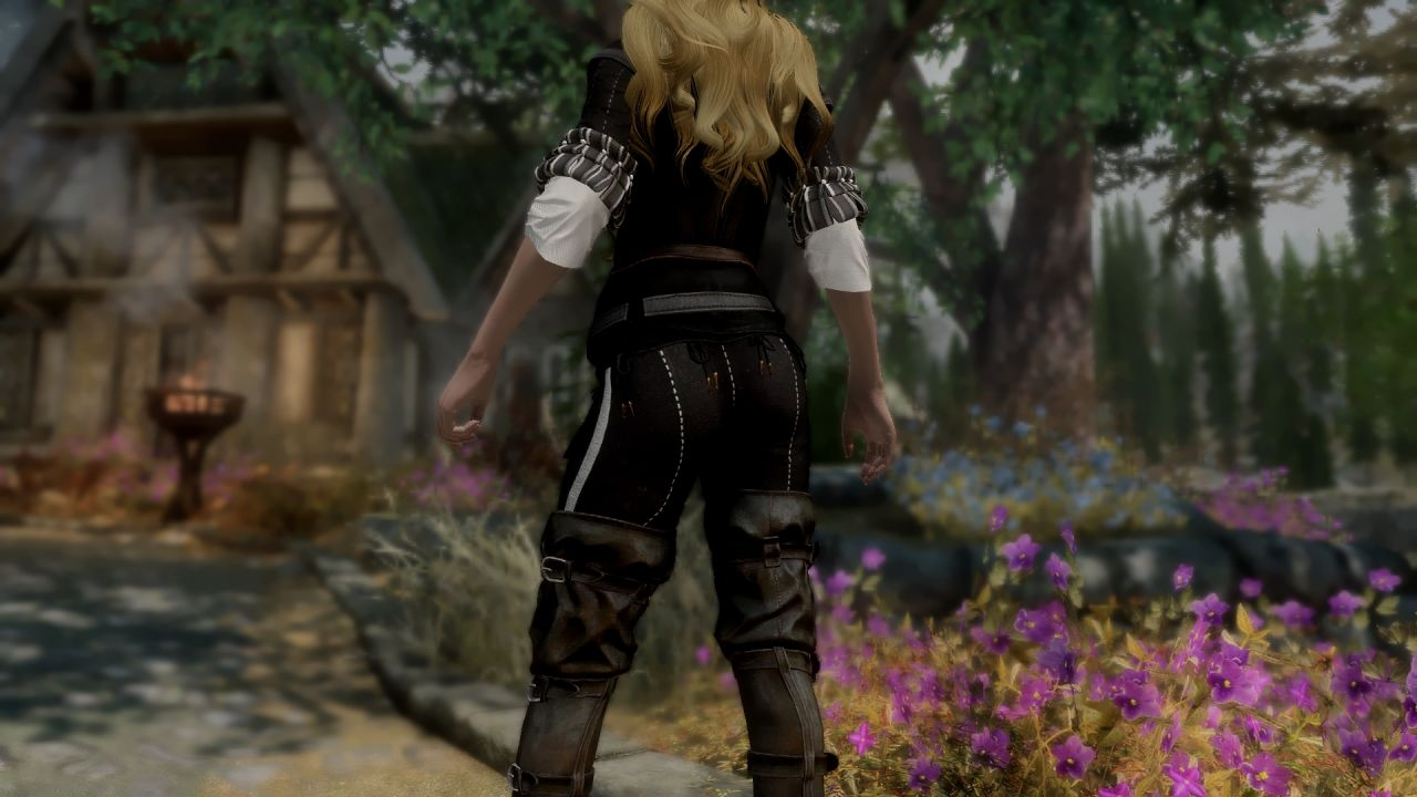 The Witcher 3 Female Armours - SSE CBBE BodySlide 鎧