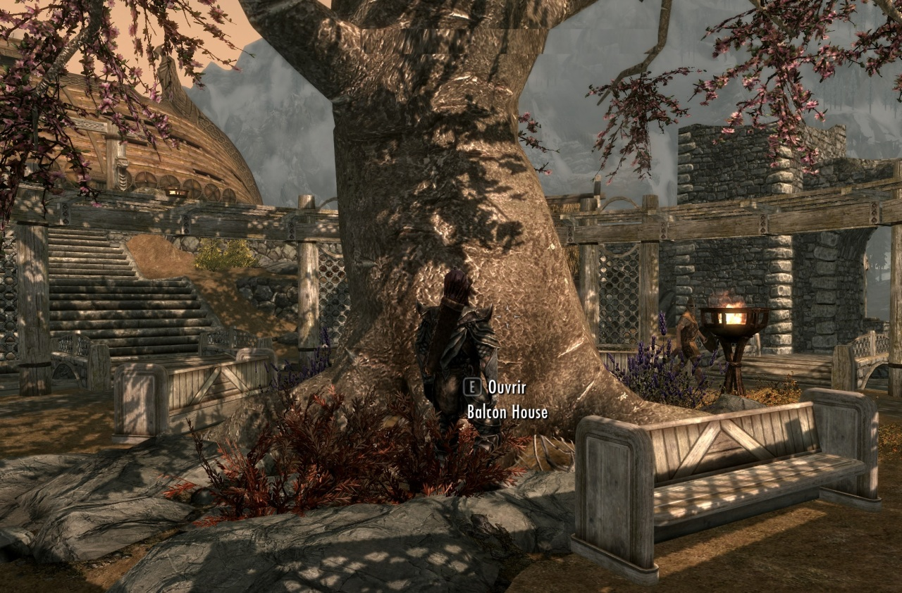 The World Tree of Skyrim (The Underground City of the Bosmers) SE